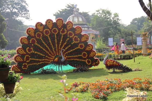 mysore dasara 2015 flower show13