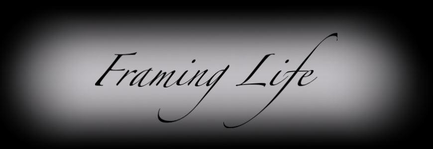 Framing Life