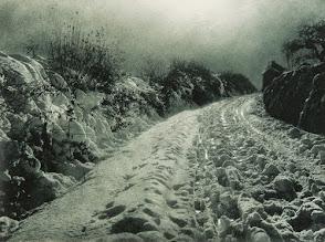 Chemin enneigé (snowy path - 1930)