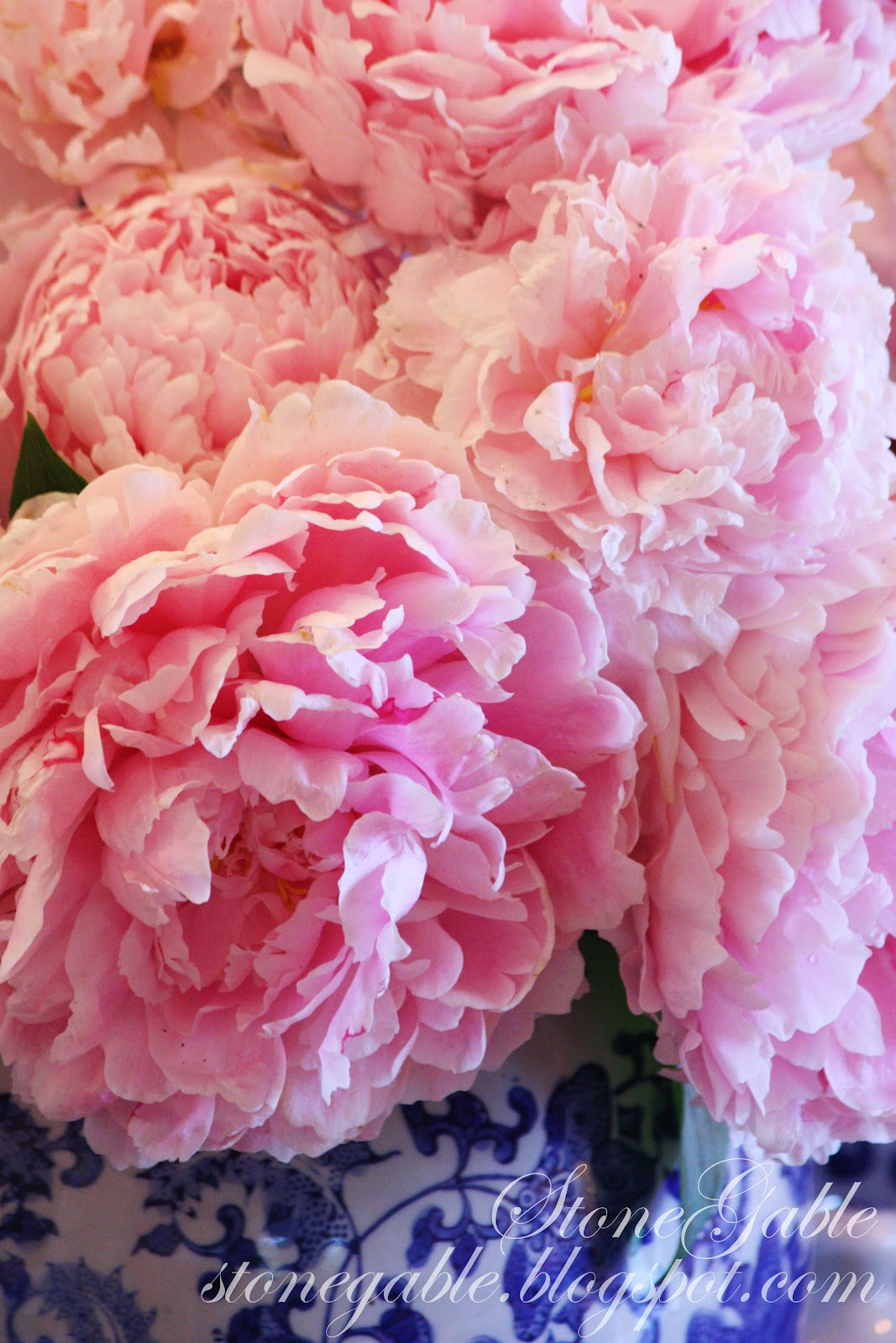 The Pink Peonies Blue Willow And Pink Peonies Tablescape  Stonegable