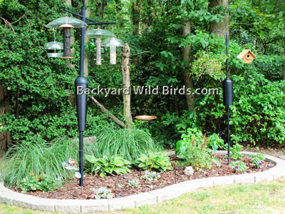 Interior Ideas: Garden Ideas For Birds