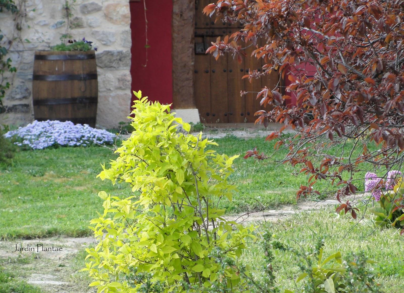 Jardiner a plantae un jard n en abril for Jardines de abril
