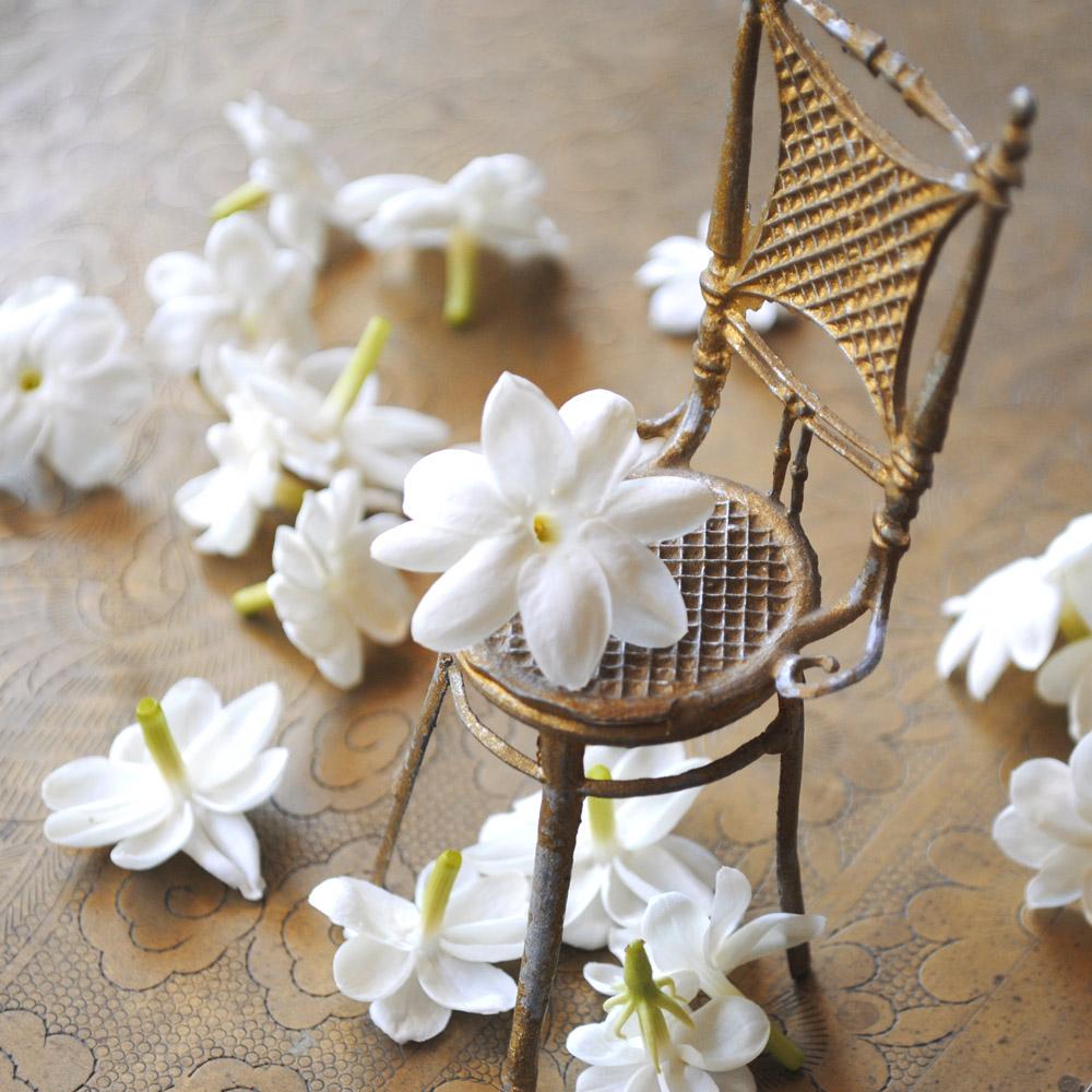 Roxana illuminated perfume perfume illuminated jasmine perfume illuminated jasmine izmirmasajfo