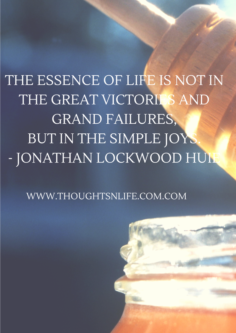 Thoughtsnlife.com :The essence of life is not in the great victories and grand failures, but in the simple joys. - Jonathan Lockwood Huie