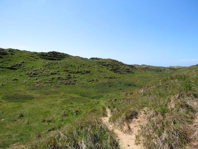 Sandscale Haws - Cumrbia