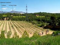 Vista del paisatge actual, amb pins i conreus, del lloc on va viure el Pau, l'homínid més antic d'Europa