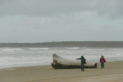 Oregon Dunes, Lane County, Florence, Coast, Pacific Ocean
