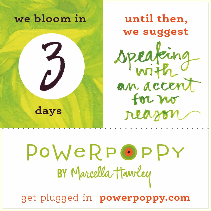 http://powerpoppy.com/