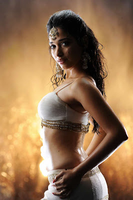 Allu Arjun, Tamanna Hot Stills from Badrinath Movie