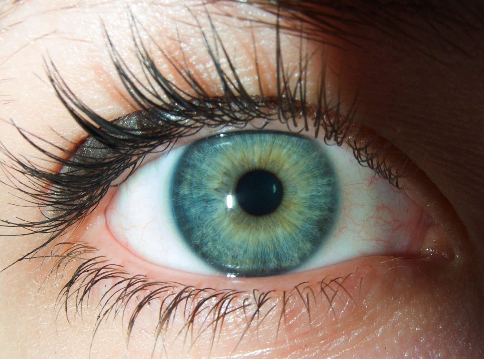 http://3.bp.blogspot.com/-6Z1LyjcqDRg/Tm4ZiQo6M6I/AAAAAAAAADg/z3UDqqh5Bp4/s1600/occhio_macro_2.jpg