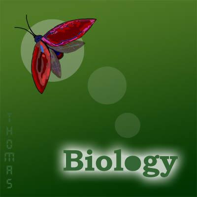 Курсовая по биологии