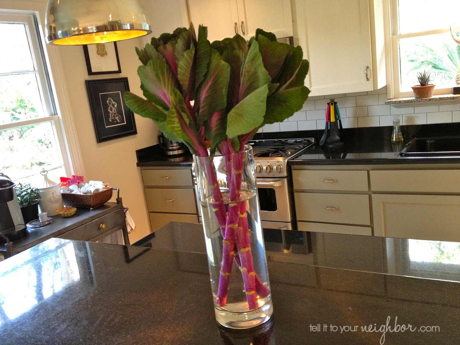 speedy floral arrangement, ornamental cabbage