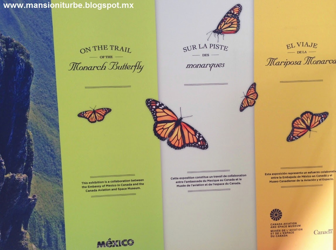 On the Trail of the Monarch Butterfly Exhibition in Morelia