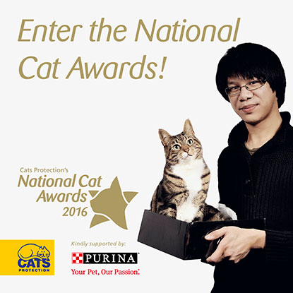 Enter the National Cat Awards 2016