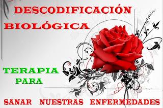 SEMINARIOS DE DESCODIFICACIÓN BIOLÓGICA
