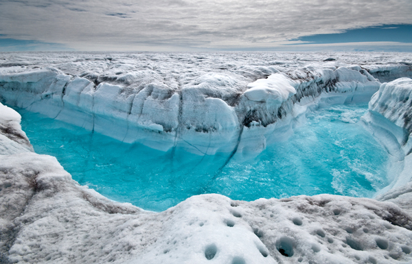 Sea level rise due to melting of polar ice caps biology in the news