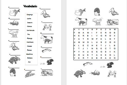 Fichas de animales vertebrados e invertebrados para colorear - Imagui