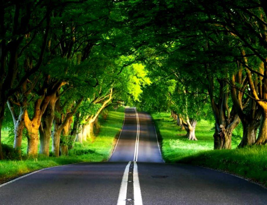 Beautiful Nature Photos Download
