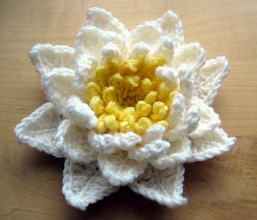 Water Lily - Free Pattern