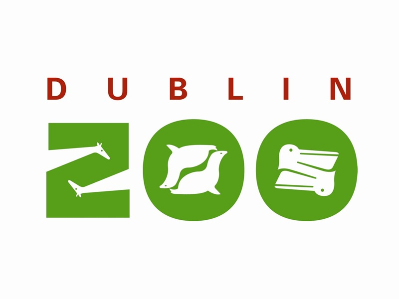 northern bald ibis dublin zoo funds satellite tag for nbi Dublin Zoo 800x600