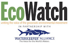 Check out EcoWatch