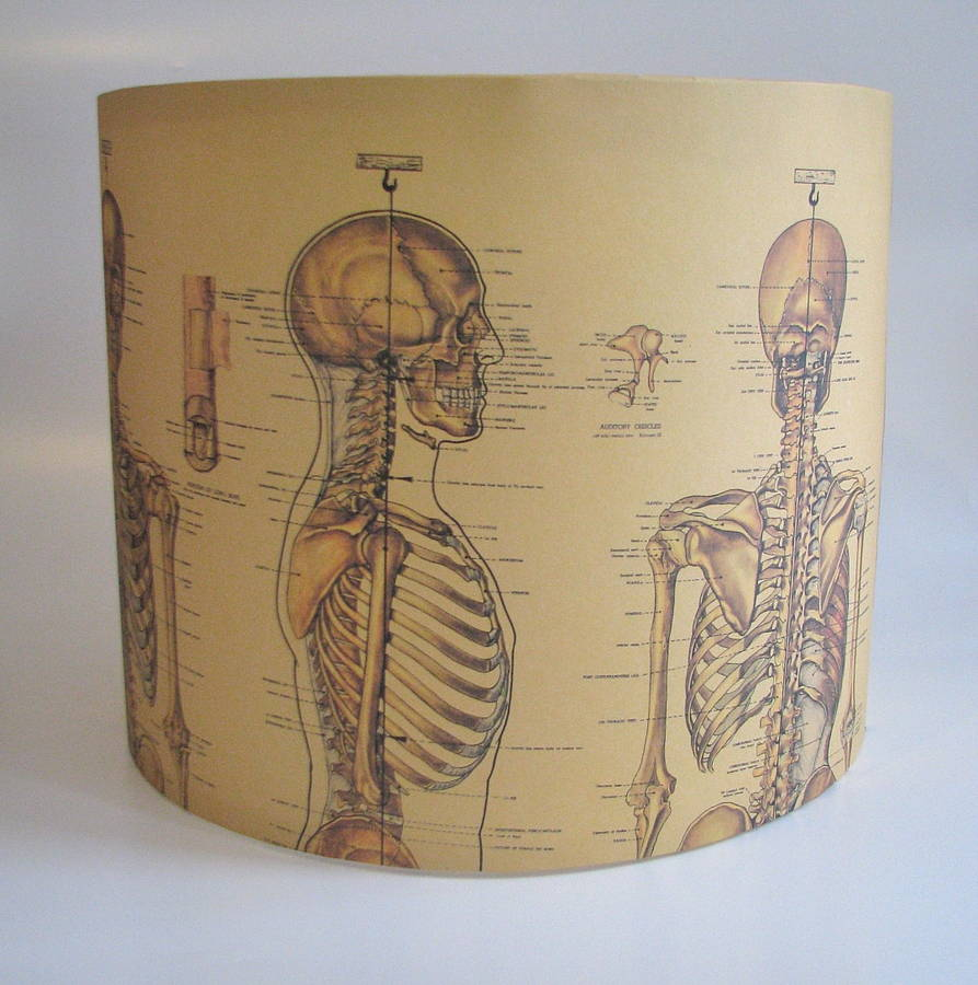 Cool lamp shades - Creative Lampshades And Cool Lampshade Designs 15 7