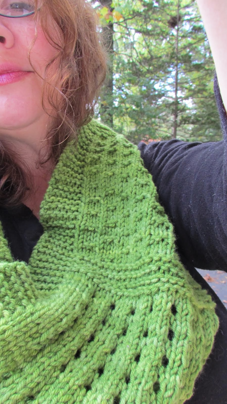 Anne's Imagination Cowl