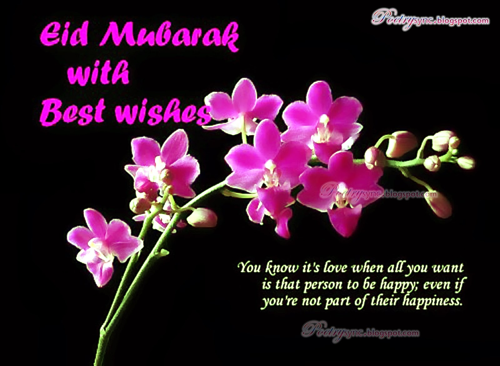 Eid mubarak quotes hd wallpapers 2015 sk friendz club eid mubarak quotes hd wallpapers 2015 kristyandbryce Images