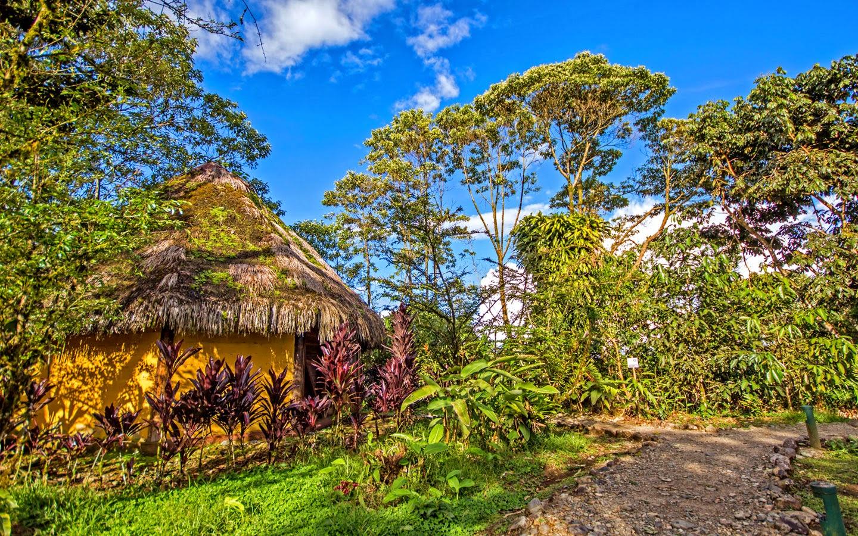 rainforest vacations