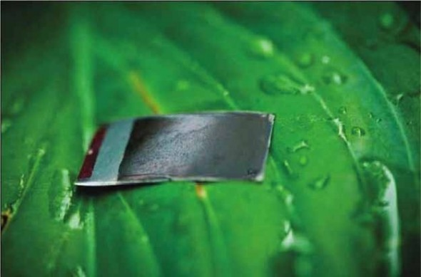 Artificial Leaves Generate Electricity