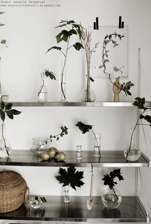 tavla ovanför en hylla, handmålad, handmålat, handmålade, tavlorna, hyllan, hylla, hyllor, vitt, svart och vit, svartvita, måla, målat, grönt, gröna växter, korg, lök, diskborste av trä, skogs, inspiration