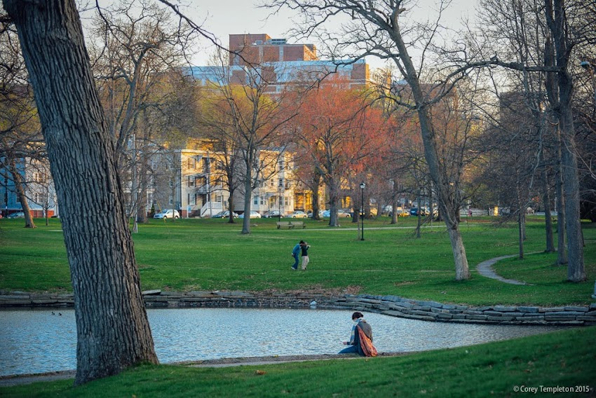 Deering Oaks Park in Portland, Maine. Spring May 2015 photo by Corey Templeton.