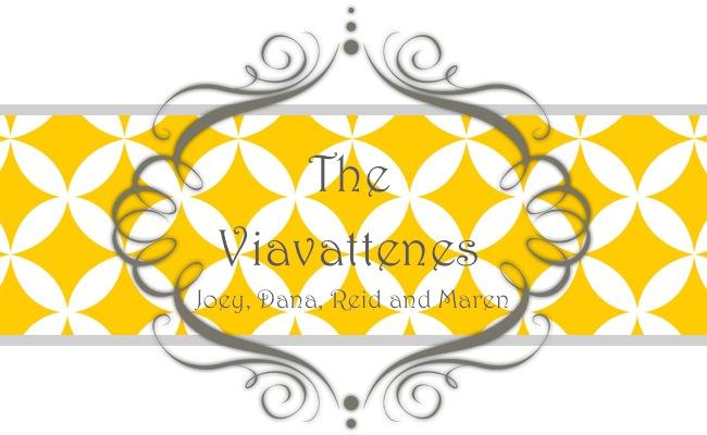 The Viavattene's