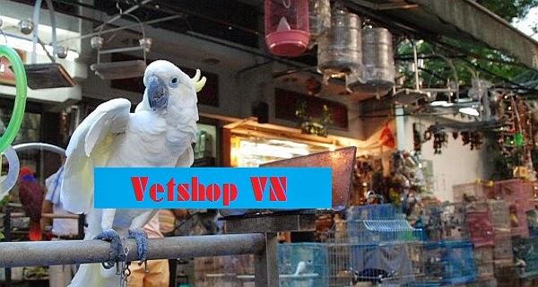 Vetshop VN - Quy trình | Kỹ thuật | Sản phẩm chăn nuôi thú y