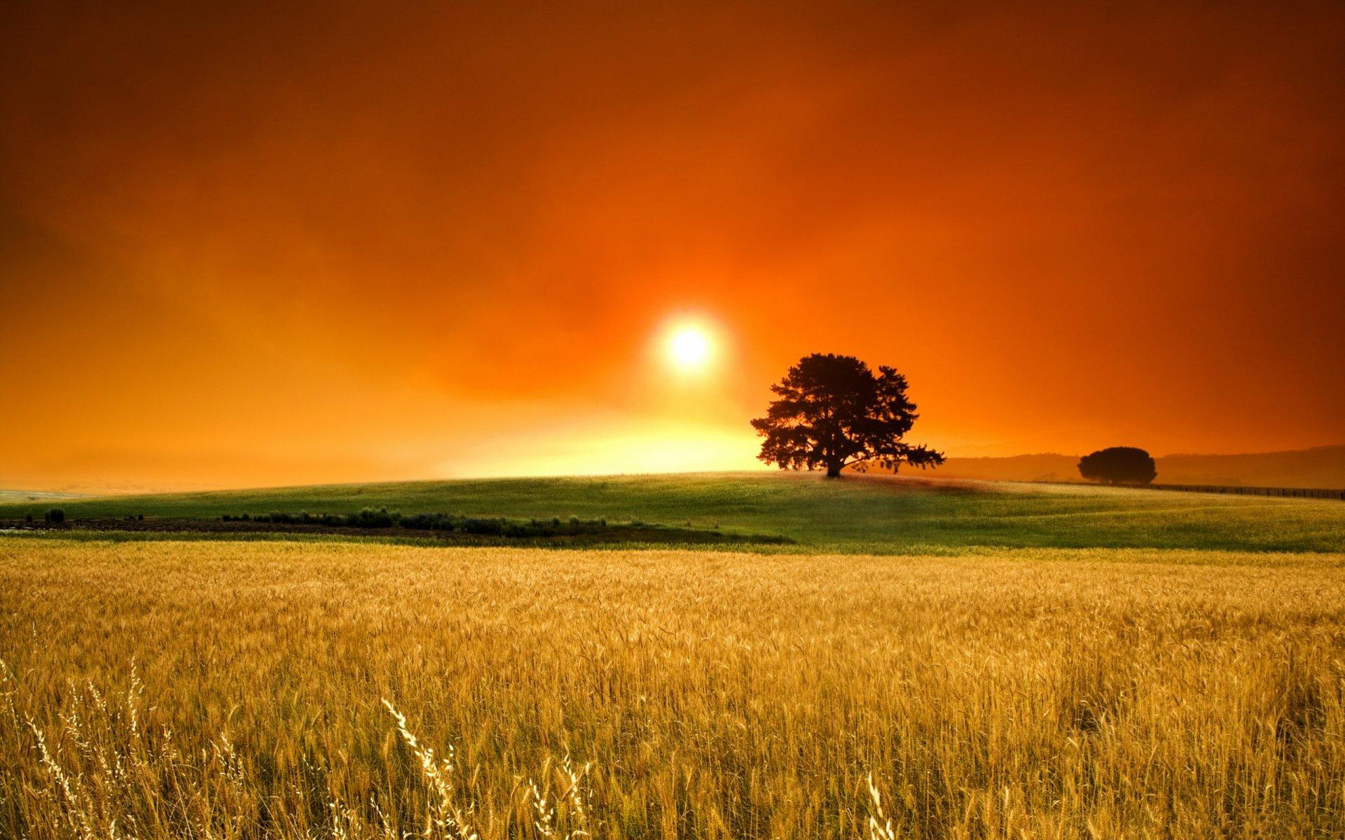 summer-sunset-wallpa