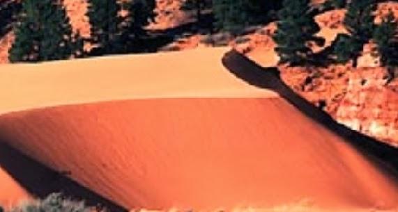 Dune is an Aeolian soil