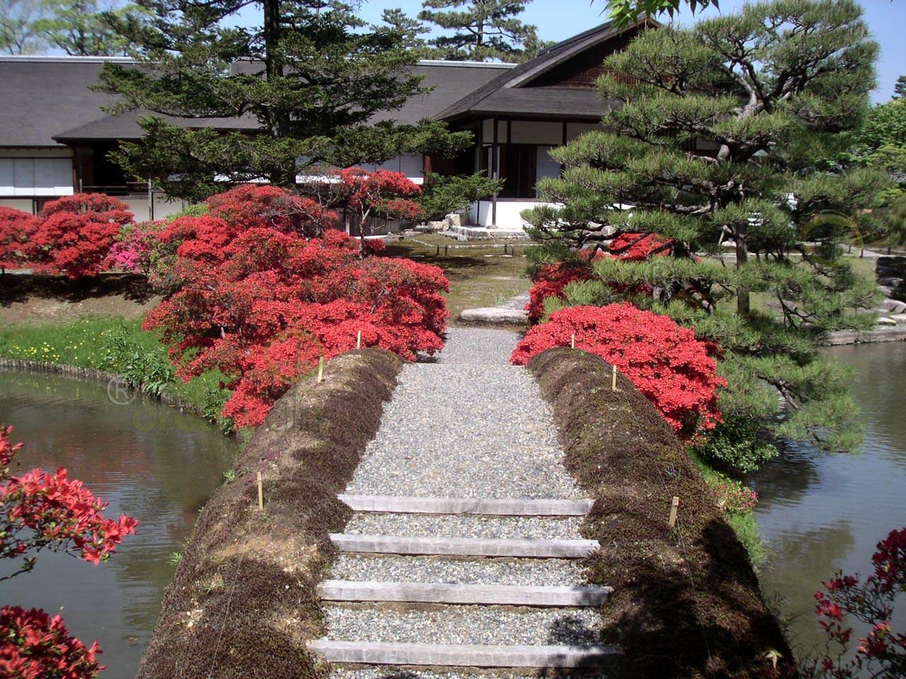Jardines de jap n creajardin - Jardines de japon ...