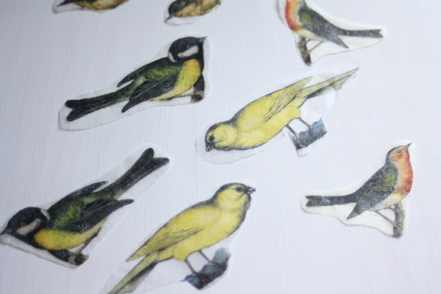 DIY bird transfers