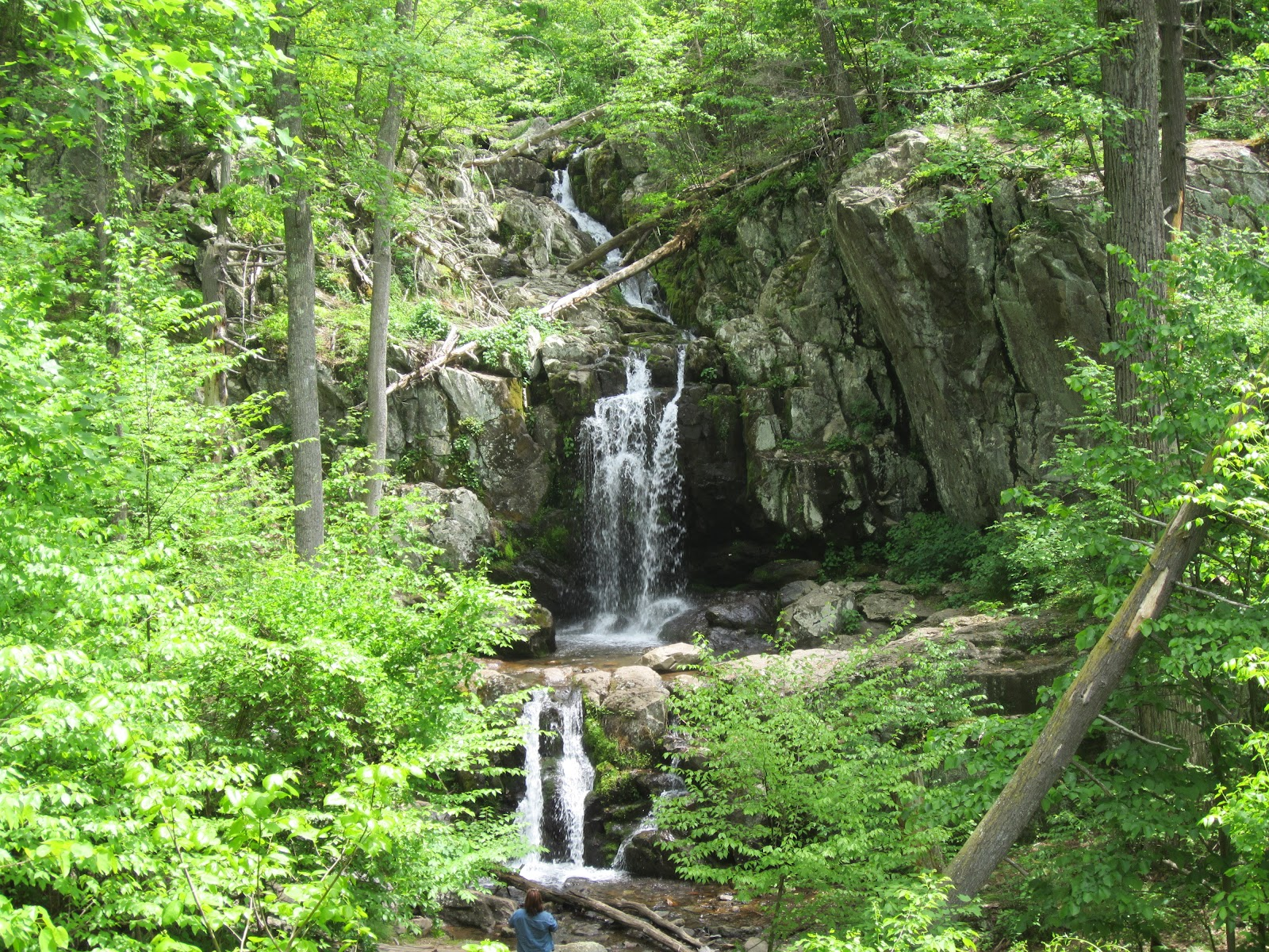 Rita Had Meanwhile Settled In By The Falls For A Pleasant, Unhurried Lunch  With A View Of Cascading Water. Soon, However, She Noticed That Something  Was Not ...