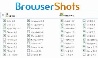 Check Your Web Design in Different Browsers with Browsershots