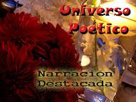 Universo Poético__ Estrella