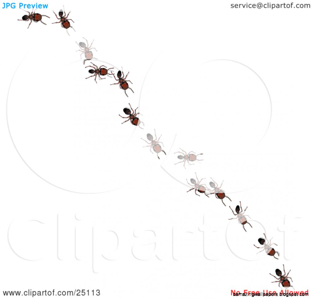Clipart Illustration of Worker Ants In A Single File Line