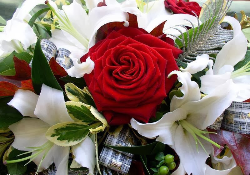red rose with white flowers