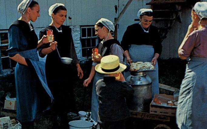 Pennsylvania Dutch Cooking >> Everyday Dutch Oven: Amish Chicken Casserole