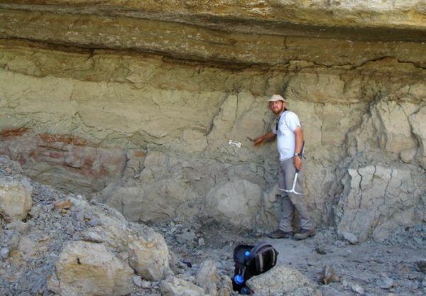 اكتشاف ديناصور آكل لحوم في مدغشقر