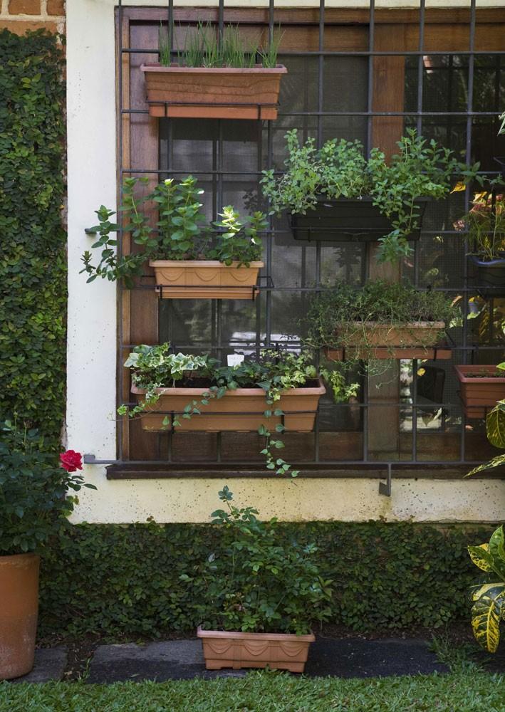 Meu Cantinho - Projetos & Paisagens: Jardim Vertical