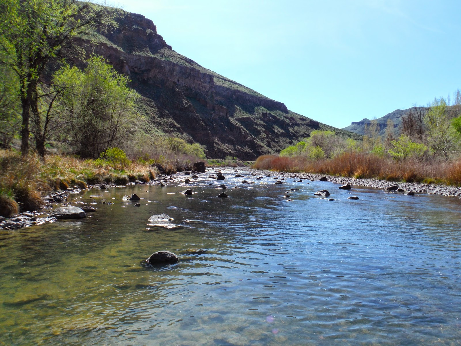 Erik s fly fishing blog the canadian connection for Owyhee river fly fishing
