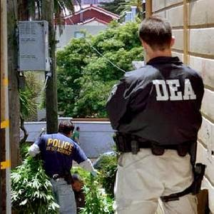 Stop Medical Marijuana Raids
