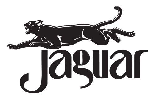 Wydawnictwo Jaguar logo