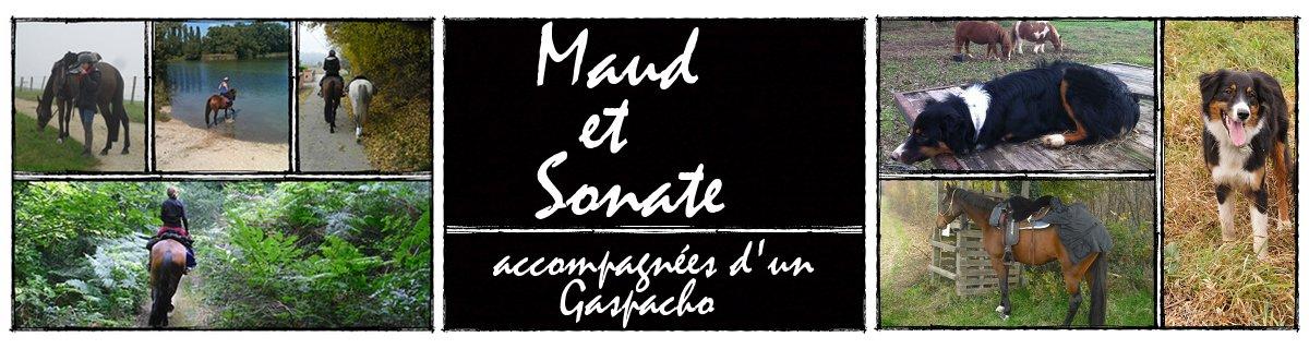 Maud et Sonate du Bugey accompagnées d'un Gaspacho